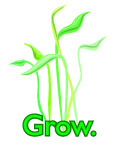 MBBP Grow Ad